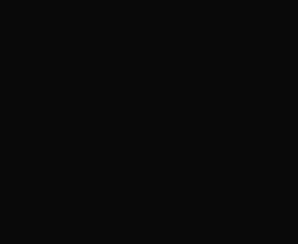 Löwe Laden Fulda Logo